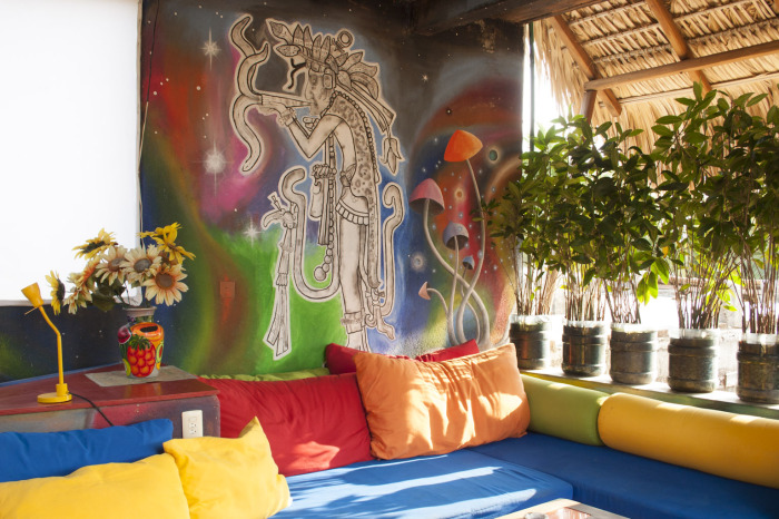 live loft detox retreat mexico