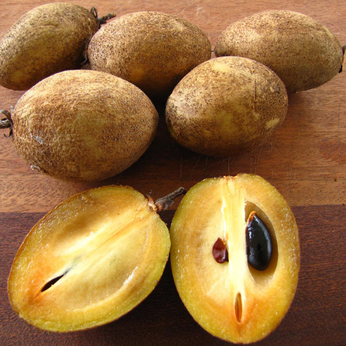 Sapodillia_Hawaiian_Fruit